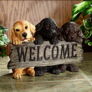 Benvenuto fra noi Pippo!! Z501-010