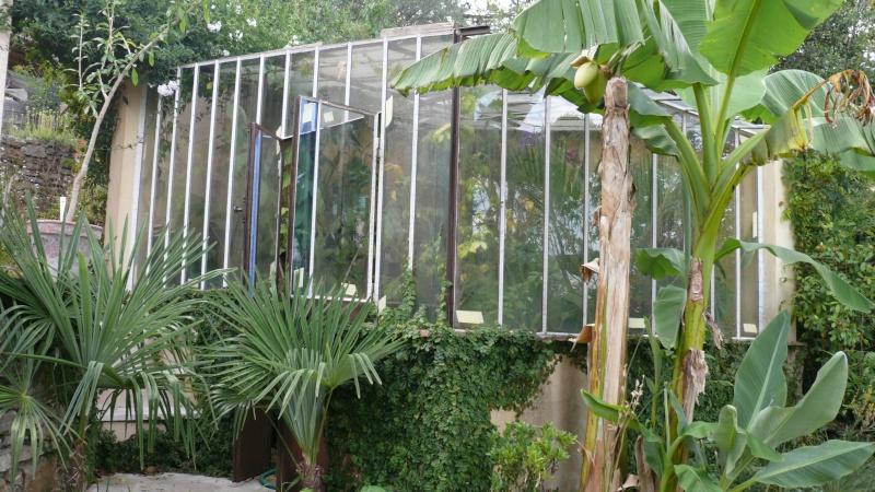 Serre de jardin L1010812