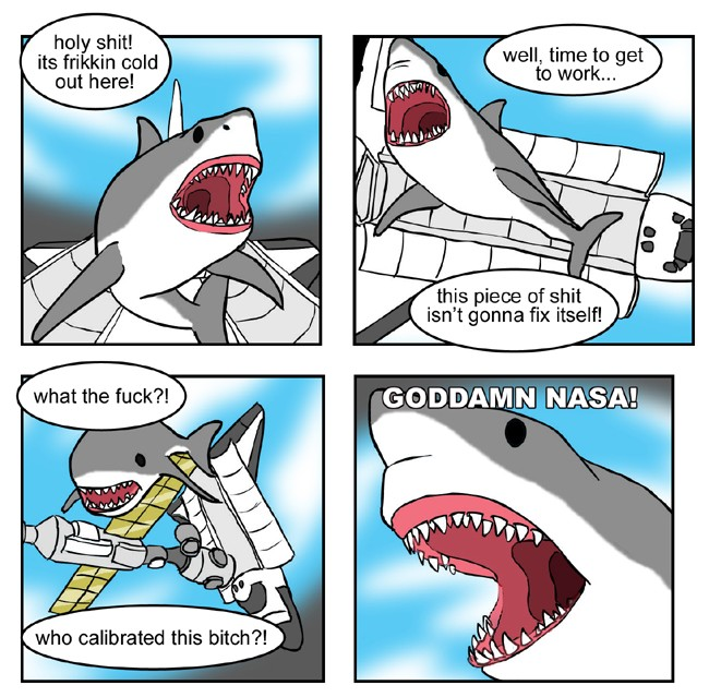 Random pictures thread - Page 2 Shark_10