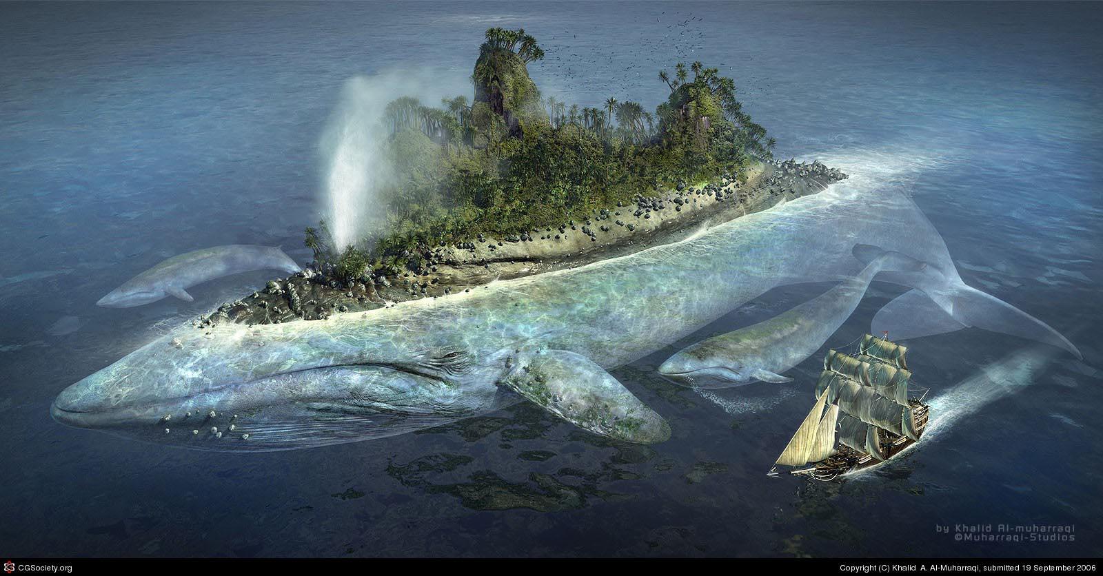 Desktop backrounds Whales10