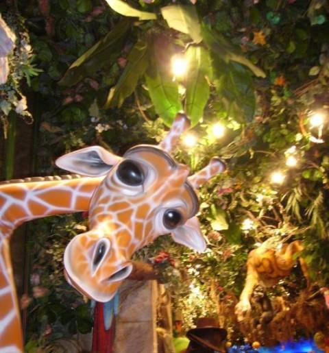 rainforest cafe 12349510