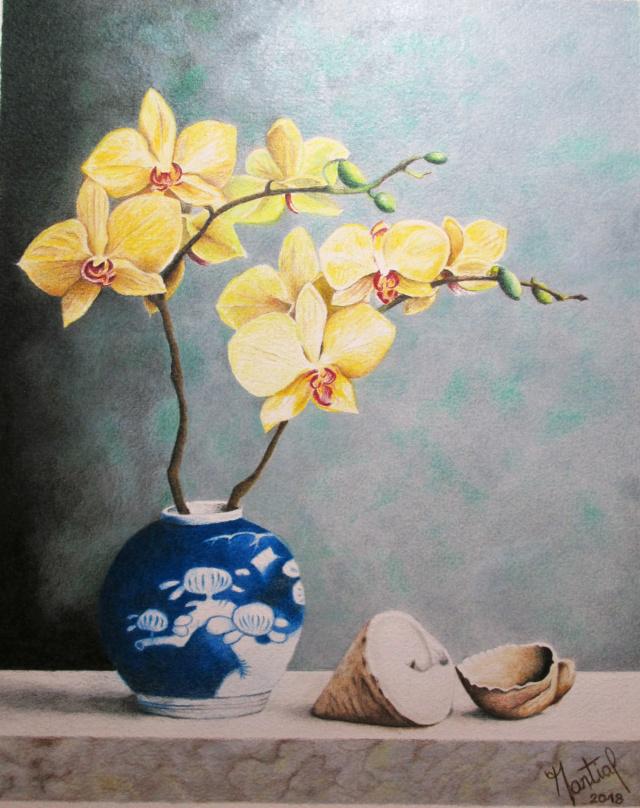 Orchidées au pot bleu Orchid10