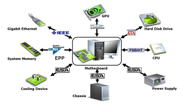 COMPUTER LITERACY 101 Cpu_pa10