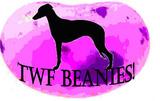 The Jelly Bean Appreciation Society