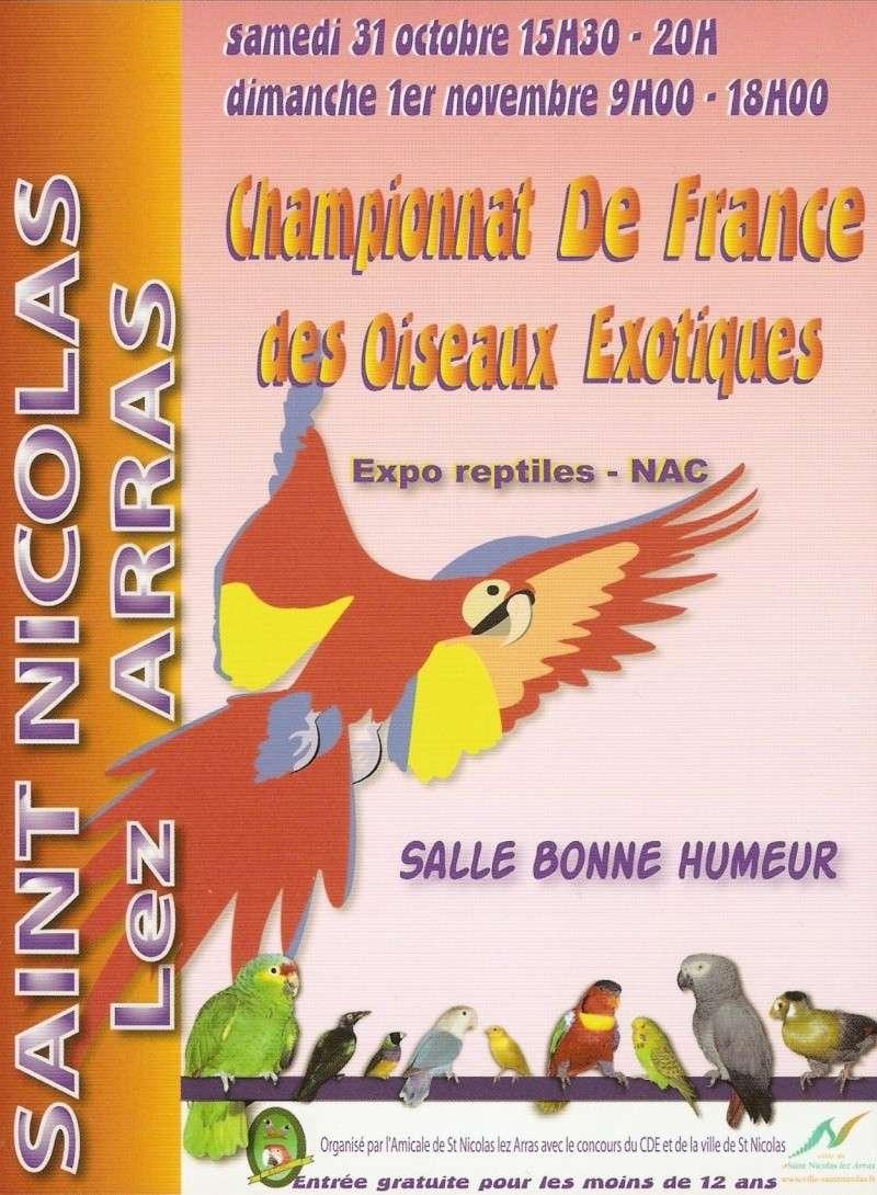 Calos et bourkes Expo_c10