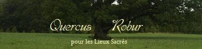 Lien et bannière Quercus Robur Bann_l10