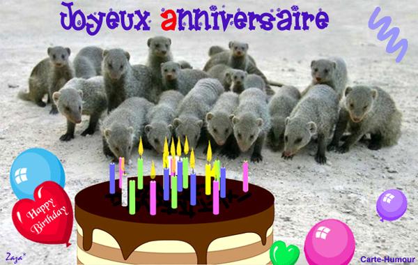 joyeux anniversaire Sylvia Animau10