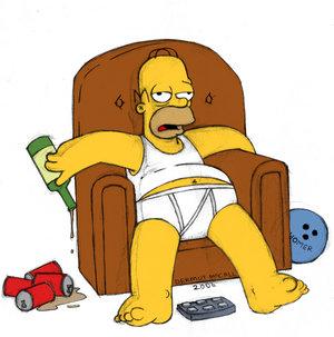 Retour de SAMZEN Homer-12
