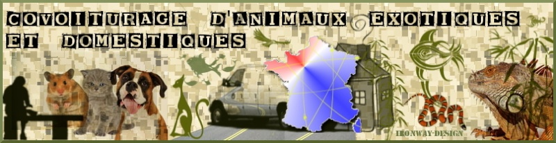 covoiturage pour animaux