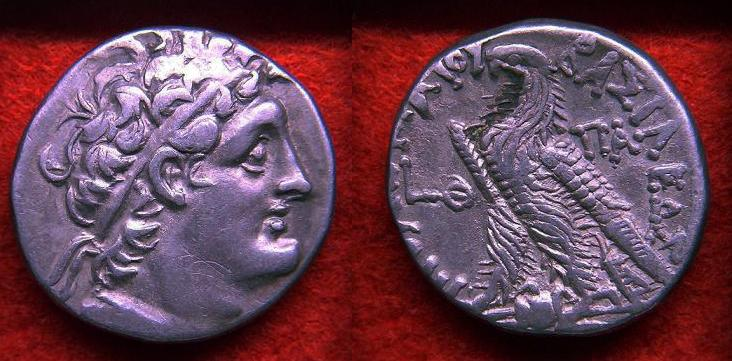 Tetradracma de Ptolomeo IX, Chipre en el año 102 a.C. Anvers13