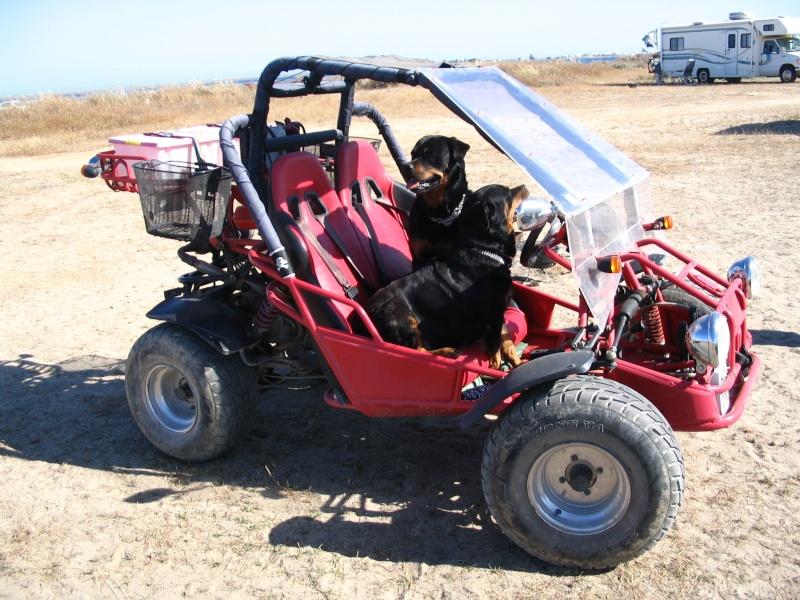 A vendre Scoot 125cc et porte-moto Steets10