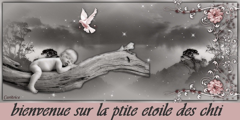 la-ptite-etoile-des-chti
