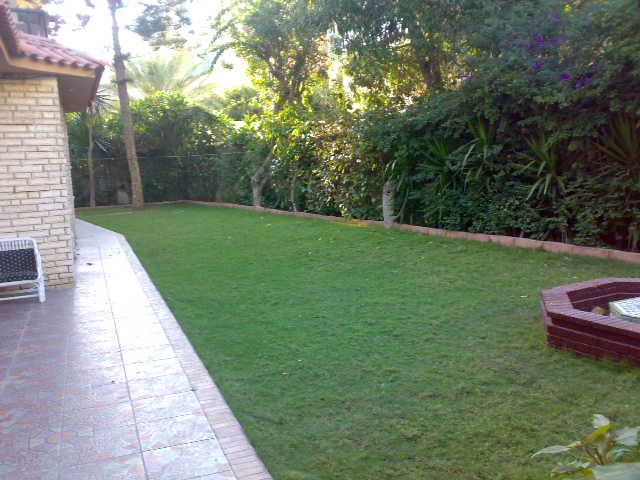 شقة أرضي بحديقة كبيرة ( فيلا ) للإقامة جميع الحفلات من حفلات الخطوبة والزفاف وأعياد الميلاد – المعمورة الشاطيء   Uuuuu171