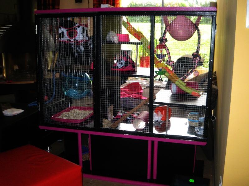 Transformation d'un meuble télé en cage! Img_2815