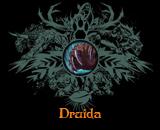 druida, druid