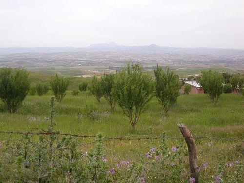 صور لمدينة مجاجة Aze10