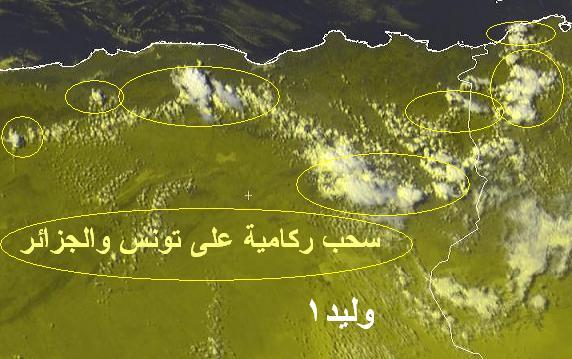 المتابعة اليومية للطقس في العالم العربي من 20/8 وحتى 23/ 8 /2009 م - صفحة 2 113