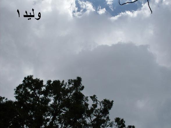 صور من سودة  أبها .. لصيف 1430 هـ Sdc10611