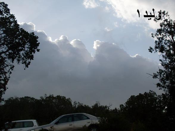 صور من سودة  أبها .. لصيف 1430 هـ Sdc10810