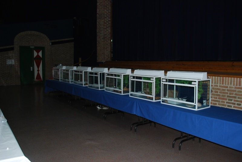 2009 - 09- les 26 et 27 - Exposition à Bailleul (59) Expo_210