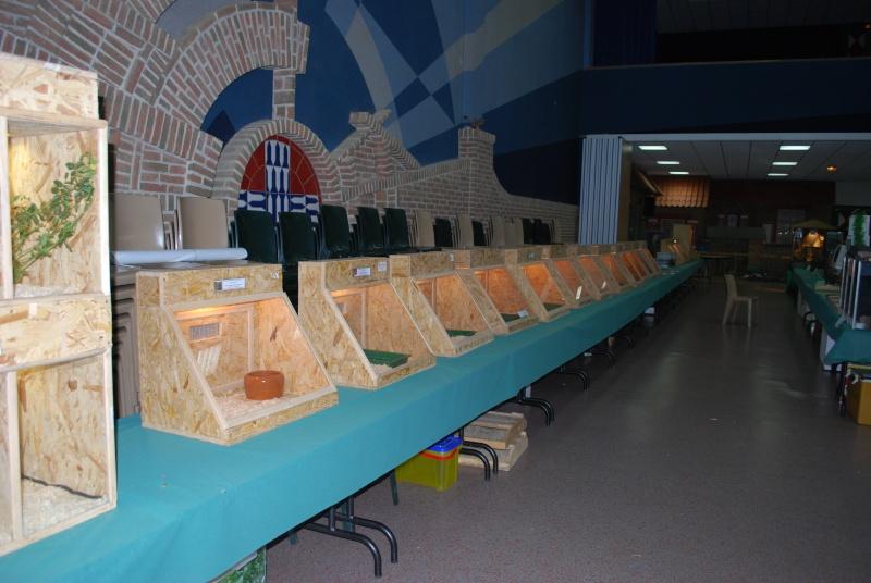2009 - 09- les 26 et 27 - Exposition à Bailleul (59) Expo_b10