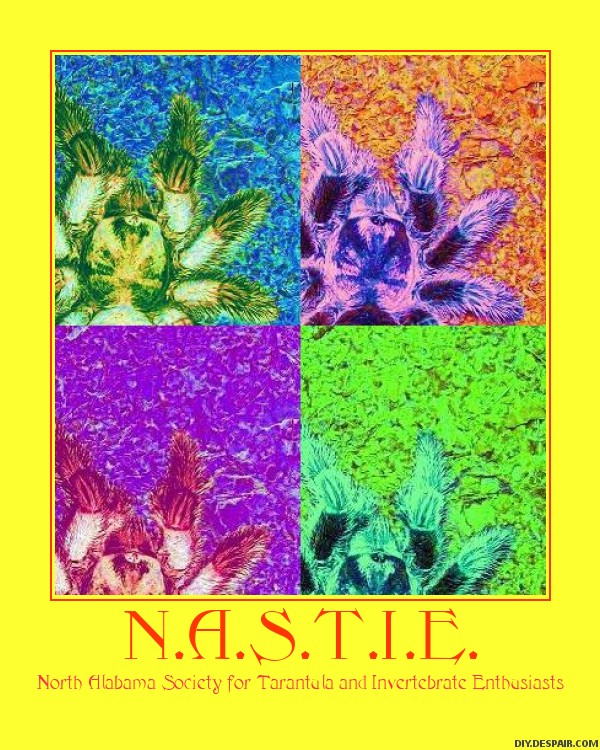 N.A.S.T.I.E. posters Nastie15