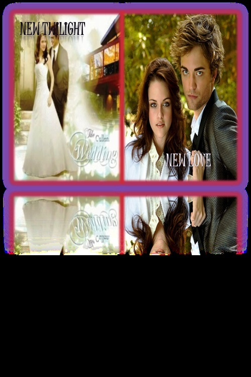 New Twilight New Love