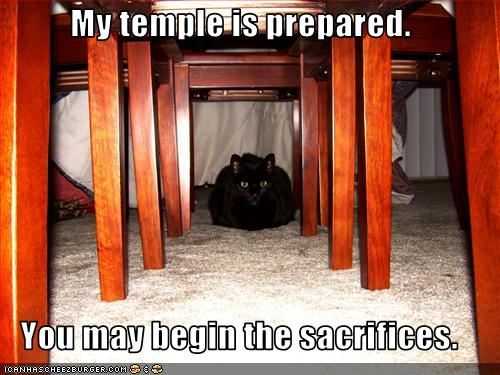 Post LOLcats here - Page 2 Funny-10