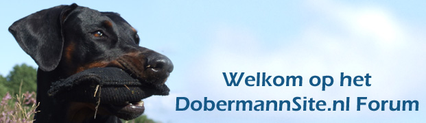 dobermannsite.nl