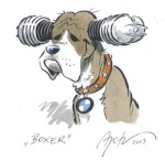 Recensement cafra' Boxer10