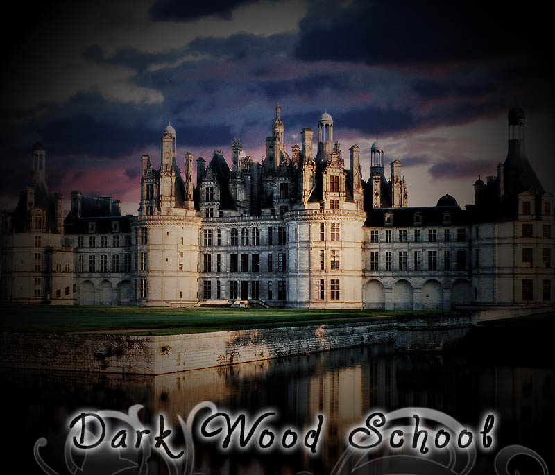Dark Wood School