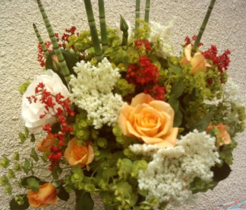 Roses, euchère, euphorbe, prèle, sureau Copie_11