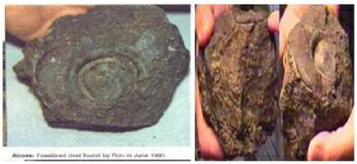 فُلك نوح (عليه السلام) في تركيا وحقائقها الثمانية 1210