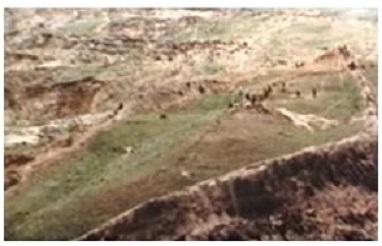 فُلك نوح (عليه السلام) في تركيا وحقائقها الثمانية 514