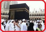 * Hajj And Umrah Untit363