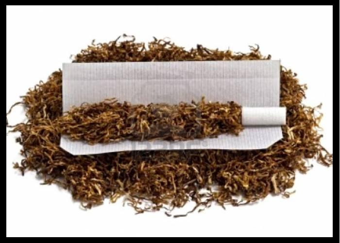 التبغ.. حقائق رئيسية... Untit365