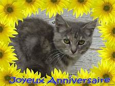 joyeux anniversaire Sylvaine  Th10