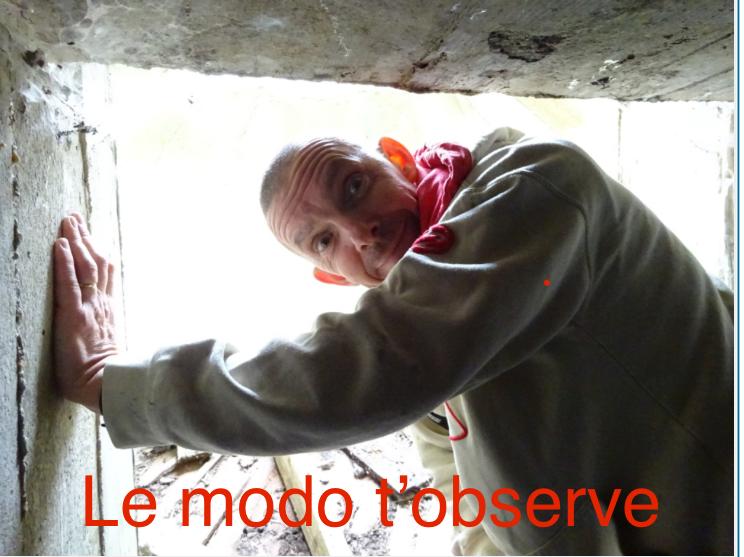 Modérateur  0d44f510
