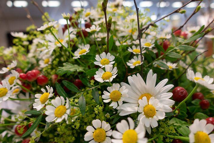 BON ANNIVERSAIRE ZARA Flower10