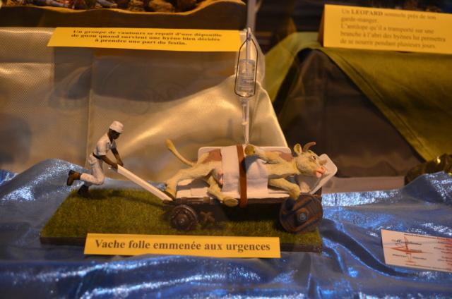 Expo de Chambéry Savoie 07411