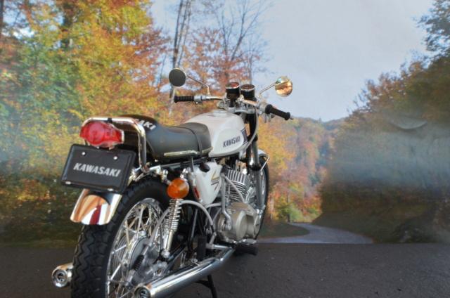 Kawasaki 500 H1 de Hasegawa Dsc_7010