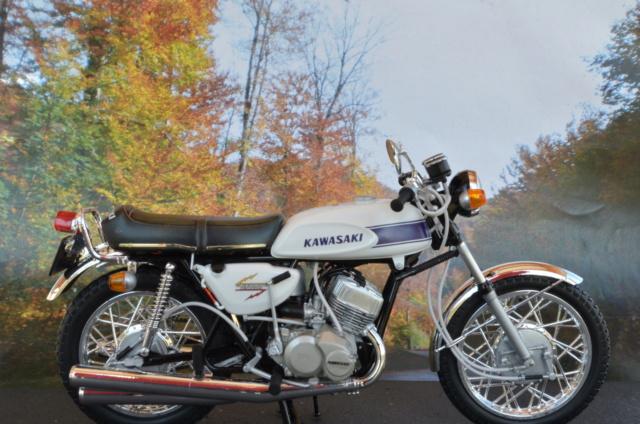 Kawasaki 500 H1 de Hasegawa Dsc_7012