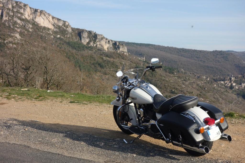 Road King uniquement, combien sur Passion-Harley  - Page 29 Dsc02226