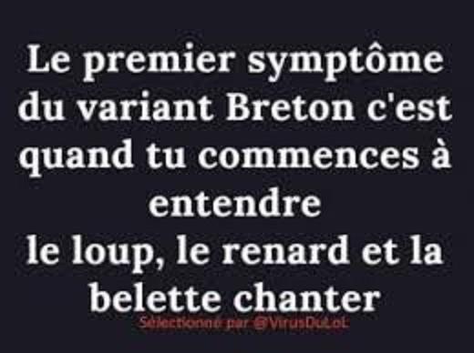 Humour covid - Page 8 Breton10