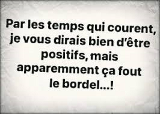 Humour covid - Page 8 Images33