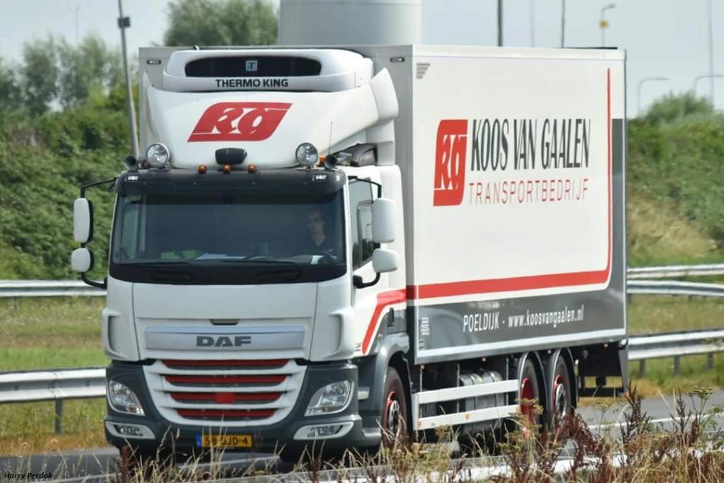 Koos Van Gaalen  (Poeldijk) Fb_im400