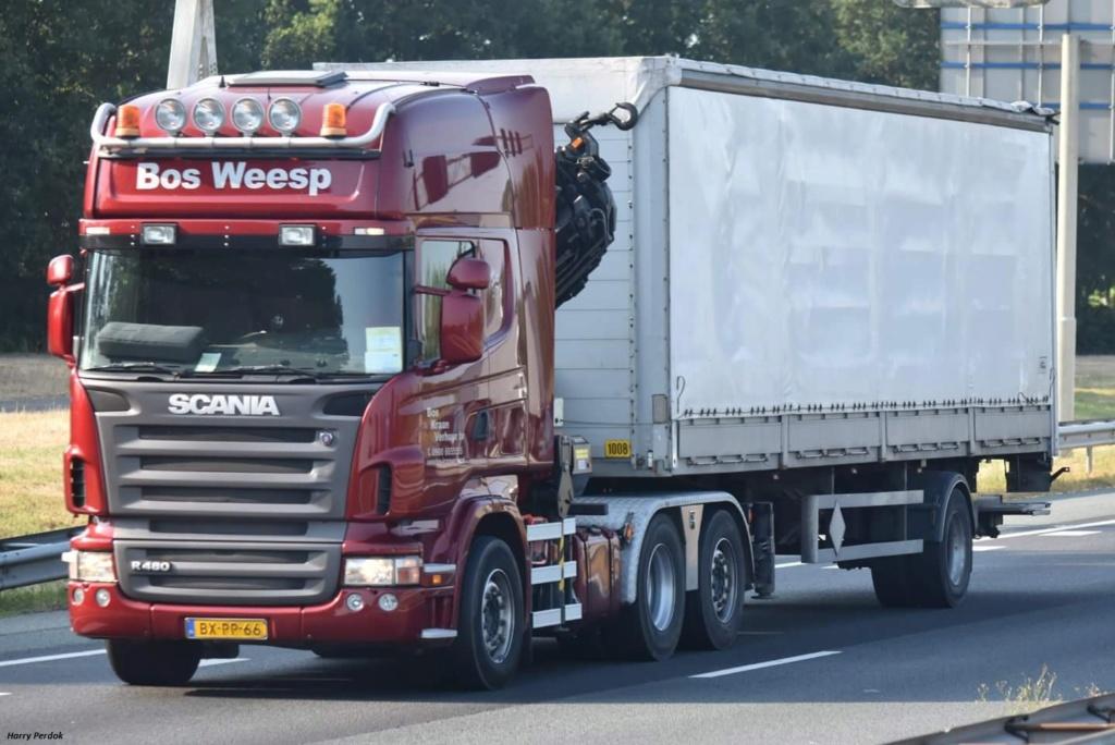 Bos (Weesp) Fb_im556