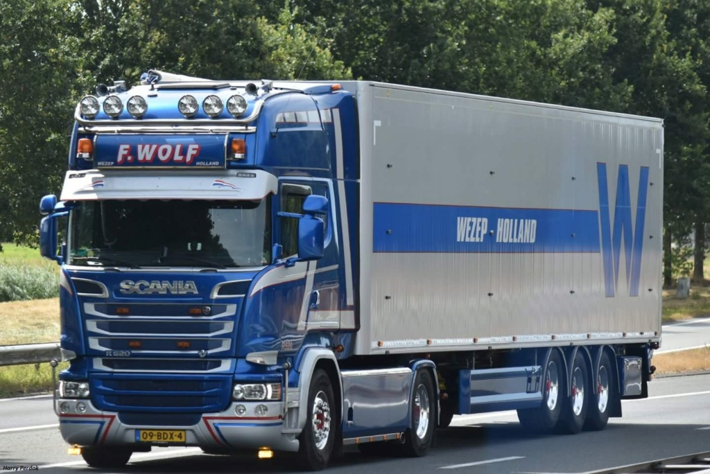 F. Wolf  (Wezep) Fb_im665