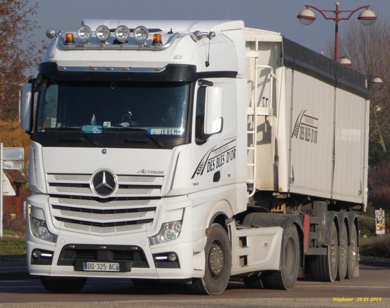 Transports des Blés d'Or (Louan Villegruis Fontaine) (77) P1000844