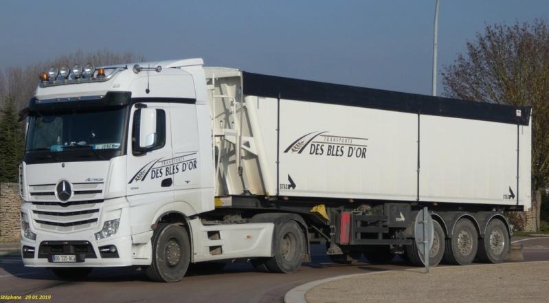 Transports des Blés d'Or (Louan Villegruis Fontaine) (77) P1000845
